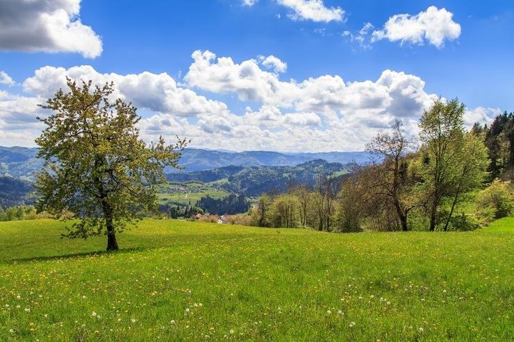 Summer Holidays in Slovenia