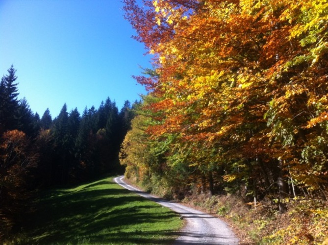 Autumn: The perfect season for walking in Slovenia
